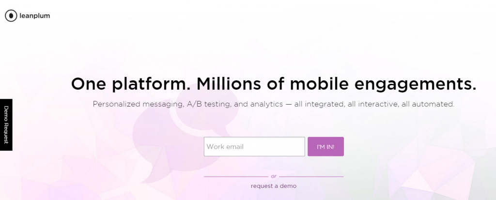 Image of Leanplumb.com homepage