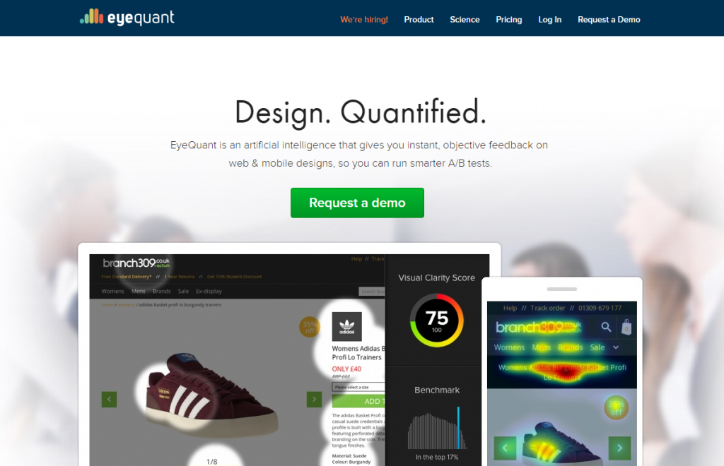 Image of eyequant.com homepage