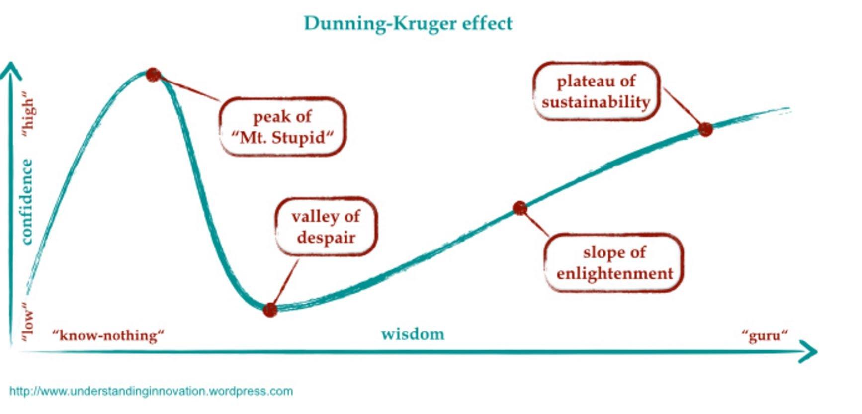 Dunning Kruger Effekt Test